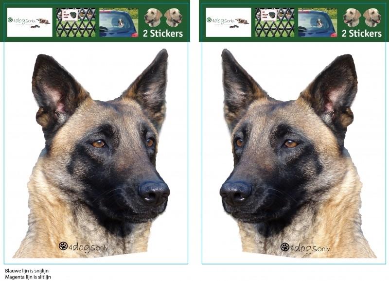 Belgian Shepherd Dog Malinois / Mechelse Herder setje 2 stuks