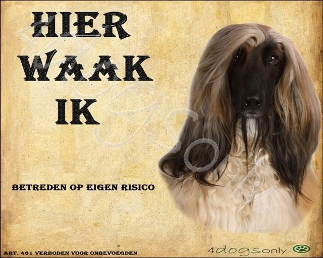 Waakbord Afgaanse Windhond (Nederlands). OP=OP