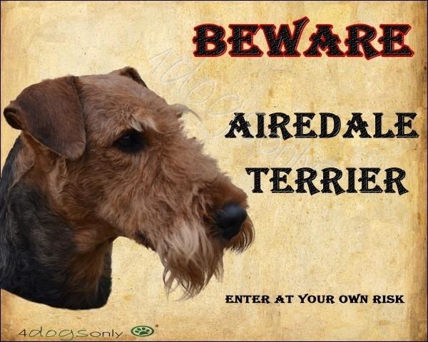 Waakbord Airedale Terrier UITVERKOCHT