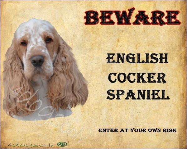 Waakbord  English Cocker Spaniel Oranje Schimmel (Engels)  OP=OP