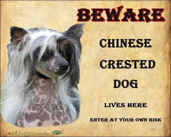 Waakbord Chinese Crested Dog Wit. Per set van 2 waakborden  OP=OP
