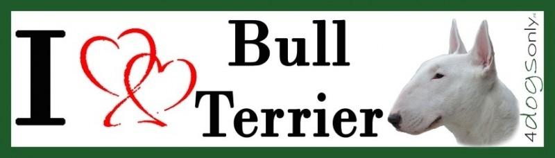 I LOVE  Bull Terrier Wit Kop  OP=OP