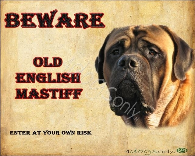 Waakbord Old English Mastiff (Engels). OP=OP