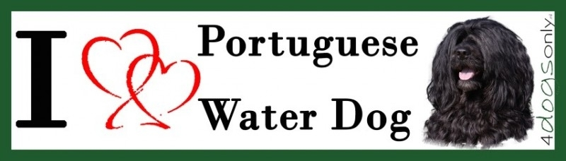 I LOVE Portuguese Water Dog Zwart OP=OP