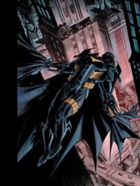 Batman, Curse of the White Knight 3 (van 3)