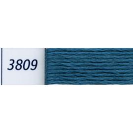 DMC - 3809