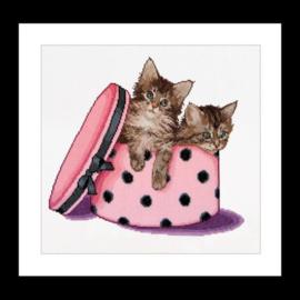 Thea Gouverneur - ref. 734 - Kitten twins