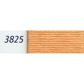 DMC - 3825
