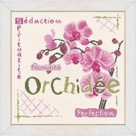 Lili Points - J002 - Orchidee
