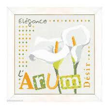 Lili Points - J019 - L'Arum (Aronskelk)