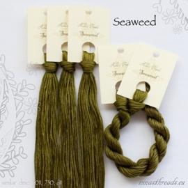 Nina's Threads - Seaweed