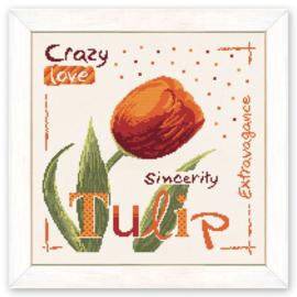 Lili Points - USJ003 - Tulip (engelse versie)