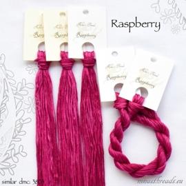 Nina's Threads - Raspberry