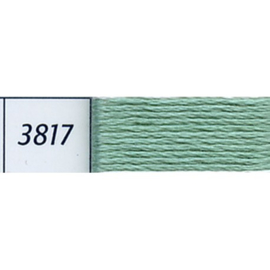 DMC - 3817