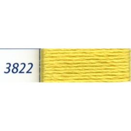 DMC - 3822