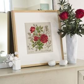 """Les Brodeuses Parisiennes - Etude à la rose """"Duc de Wellington"""" (linnen)"""