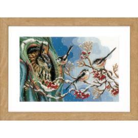 Vervaco - PN-0157405 - Uil en staartmees