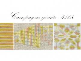 DMC Coloris 4508 - Campagne givrée