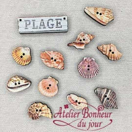 """Atelier Bonheur du Jour -  """"Strand & schelpen"""" (B-20)"""