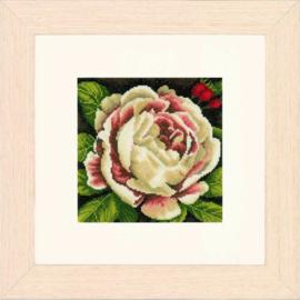 Lanarte - White Rose (PN-0144567)