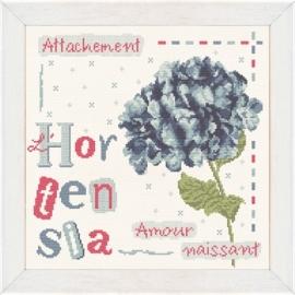Lili Points - J008 (Hortensia)