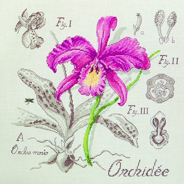 Les Brodeuses Parisiennes - Etude à l'Orchidée (lin)