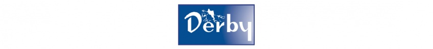 Derby logo.jpg