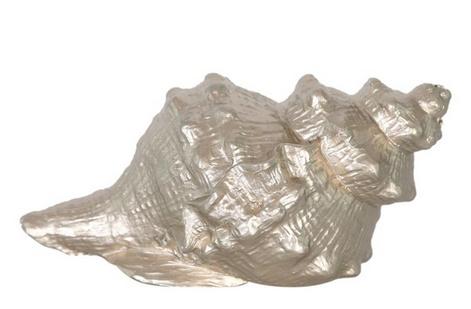 Deco shell polyresin 14x9x7cm - Champagne