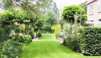 hagen bladhoudend.jpg