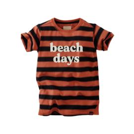 Z8 t-shirt Alec bruin zwart gestreept
