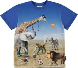 Molo jongens shirt Roxo dieren voetbal