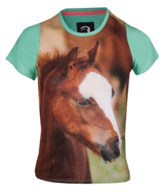 HORKA T-Shirt Ollie Pistachio