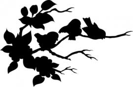 Vogeltjes opTak