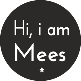 strijkapplicatie 'Hi i am' ster