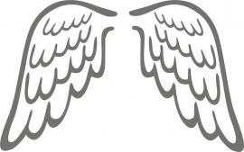 strijkapplicatie vleugels