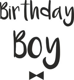 Birthday Boy tekst