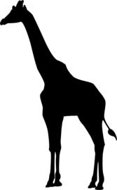 strijkapplicatie Giraf