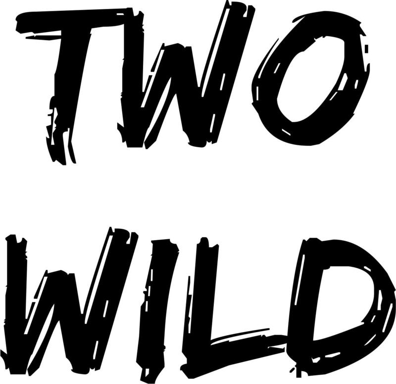 Strijkapplicatie Two Wild