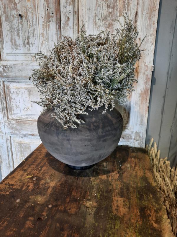 mooie sobere bos droogbloemen
