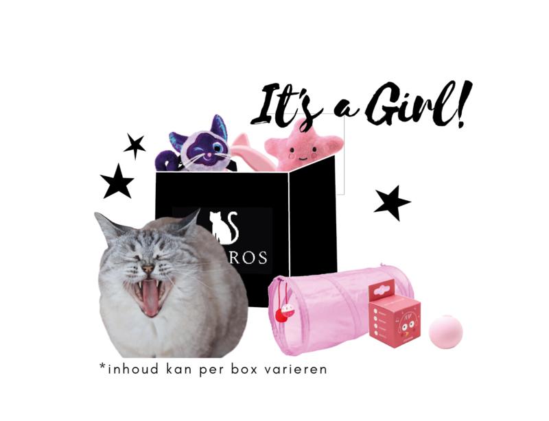 Ailuros Box Babypink edition