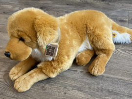 Giant golden retriever