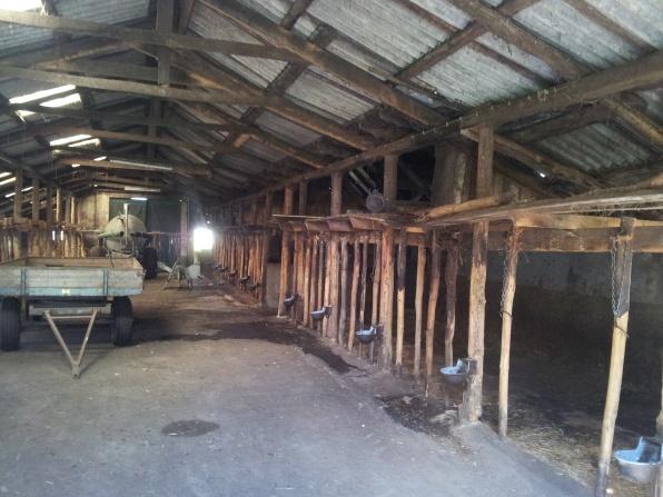 oude koeienstal binnenkant