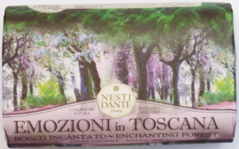 Emozioni in Toscana: Enchanting forest