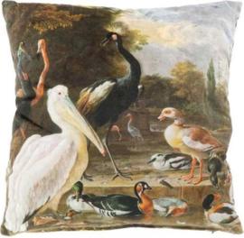 Kussen eenden