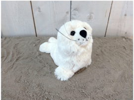Zittende zeehond