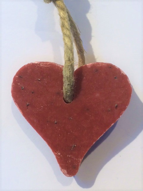 zeephart met cranberrypit