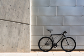 Wulf singlespeed State bicycle
