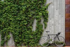 State bicycle 4130 Road - Black & Metallic - 8speed