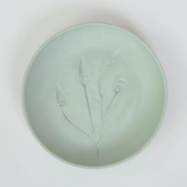 Plantenbord S - Groen 04