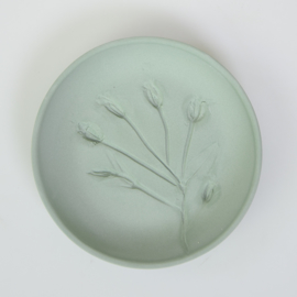 Plantenbord S - Groen 08